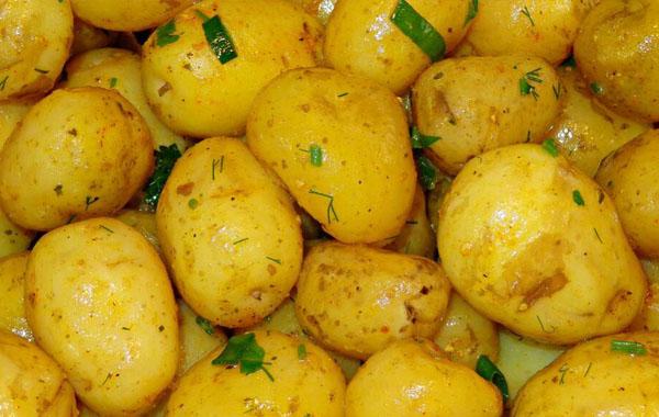 600土豆··